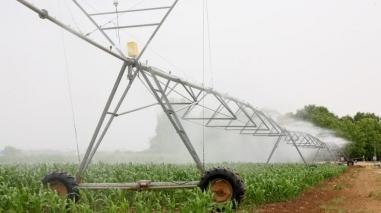 Plataforma Comercial de Produtos Agrícolas avança em Ferreira do Alentejo e Aljustrel