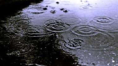 Forte chuvada  caiu  no concelho de Ferreira do Alentejo