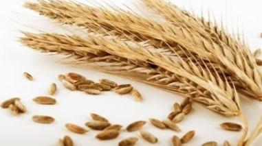 Preço dos cereais aumentou 76% em apenas um ano