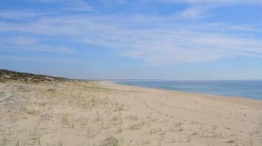 Concessionário da praia da Comporta (Grândola) é o segundo melhor do país