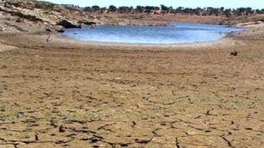 Agricultores de Serpa querem reunião com ministra da Agricultura devido à ameaça de seca