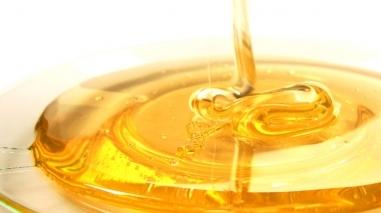 Espaço Oficinas (Aljustrel) recebe tertúlia sobre o mel
