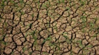 Seca: Instituto de Meteorologia prevê dias de sol até 3 de Março