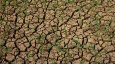 Relatório garante que actual período de seca é menos grave que em 2005
