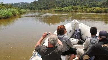 Câmara de Odemira promove passeios regulares no Rio Mira durante o Verão