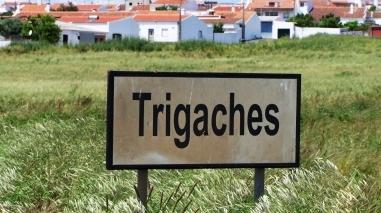 """Câmara de Beja promove """"Semana Aberta"""" em Trigaches e São Brissos"""