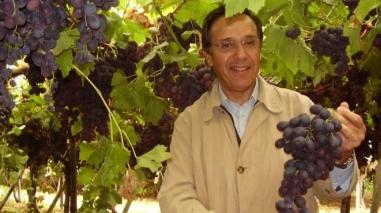 Herdade Vale da Rosa quer exportar mais uvas de mesa em 2012