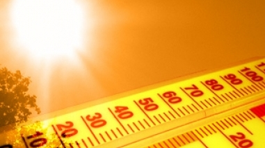 Altas temperaturas colocam distrito de Beja em alerta Amarelo