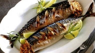"""Semana gastronómica em Odemira """"abre o apetite"""" com pratos à base de cavala"""