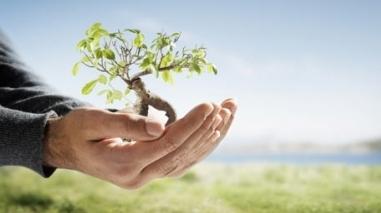 Plano de Acção para as Energias Sustentáveis de Beja já está aprovado