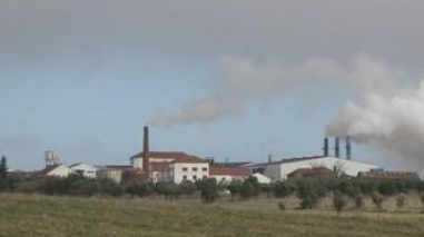 Cheiro a azeite no Baixo Alentejo não é perigoso para a saúde pública