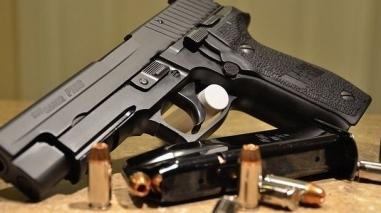 PSP apreende armas em propriedade de turismo rural na Vidigueira