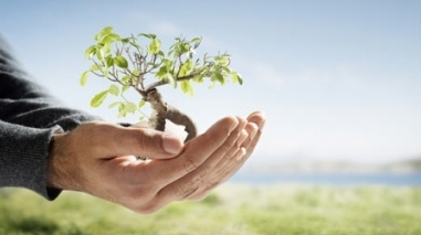 EDIA e Cooperativa Agrícola de Beringel criam Academia das Hortícolas de Alqueva