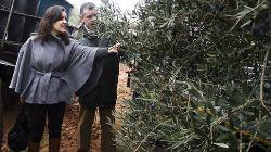Ministra da Agricultura mostrou