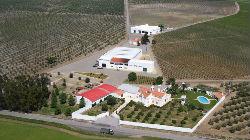 Vinhos Cameirinha premiados
