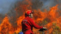 Incêndio devasta área de