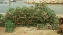 Armadilhas de pesca