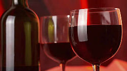 Vinhos do Alentejo à prova