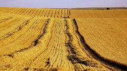 Agricultura e alterações