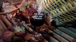 Feira do Vinho e da