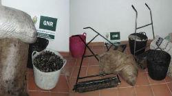 GNR de Moura identifica