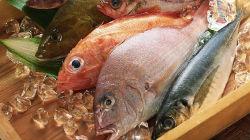 Pescadores da Azenha do Mar