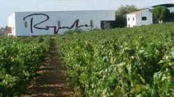 Vinhos Roquevale fazem