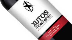 Vinho Xutos & Pontapés