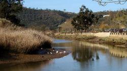 Livro sobre o rio Mira