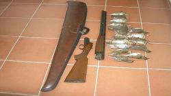 Dois caçadores detidos