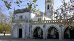 Museu Regional: PSD de Beja acusa