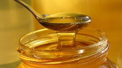 Medronho e mel nas mesas de Odemira