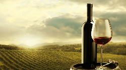 Melhores vinhos