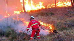 Beja: Dispositivo de combate a incêndios apresentado