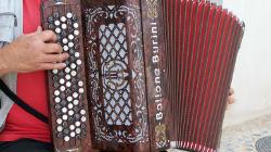 Jovens acordeonistas