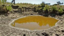 Governo avalia seca em