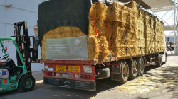 ACOS apoia agricultores