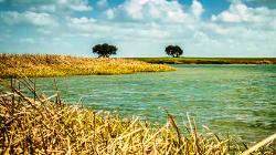 Praia fluvial vai avançar no concelho de Beja