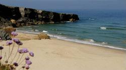 Nova praia naturista