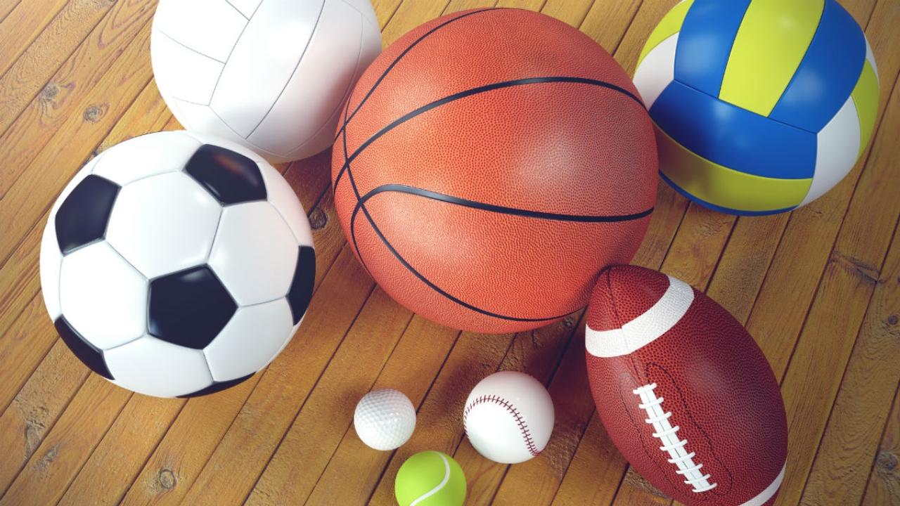 Odemira promove formação em desporto