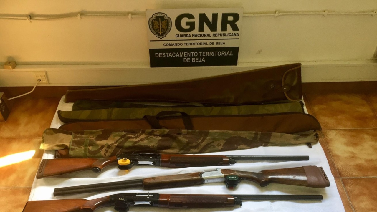 Cinco detidos em Beja por caça ilegal